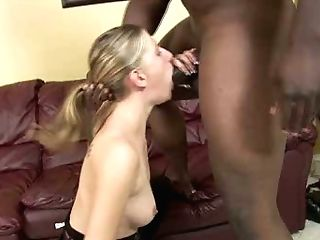 Smallish Titted Bitch Aspen Blue Fucks Dirty In Interracial Porno Vid